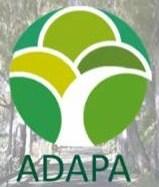LOGO ADAPA - copia